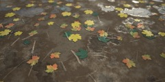 Leaves Ground